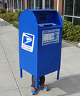 USPS Mailbox Costume