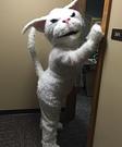 Whitey Cat Costume