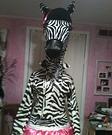 Disco Zebra Costume